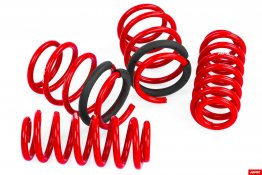 APR Roll-Control Springs - 8V S3, RS3