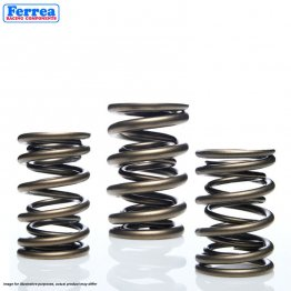 Ferrea Racing Components - Volkswagen/Audi 1.8T - Dual Valve Springs - Exhaust - Set of 8