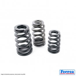 Ferrea Racing Components - Volkswagen/Audi 2.8L VR6 24V - Single Valve Springs - Set of 24